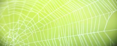 Inquinanti organici persistenti (POP) - Pubblicato il nuovo regolamento