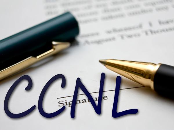 Ccnl imprese di pulizia e servizi integrati multiservizi for Ccnl legno e arredamento piccola e media industria