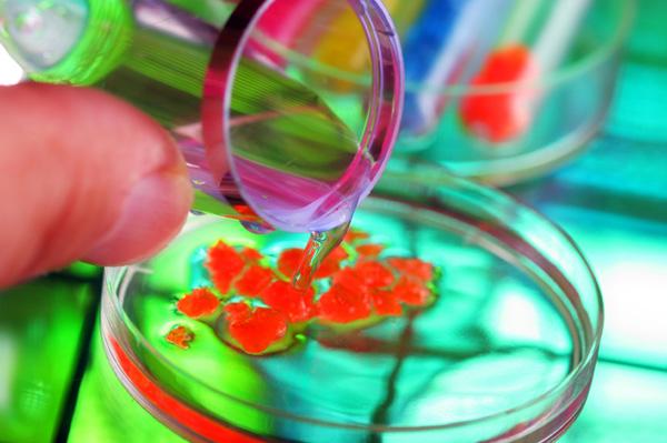 Ccnl chimico e chimico farmaceutico incrementi del for Ccnl legno e arredamento piccola e media industria