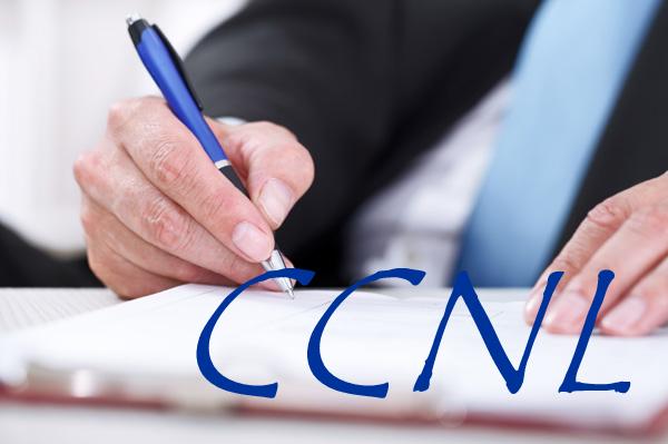 Ccnl imprese di pulizia multiservizi stato della for Ccnl legno e arredamento piccola e media industria