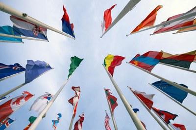 Ccnl per i dipendenti del terziario commercio for Ccnl terziario distribuzione e servizi
