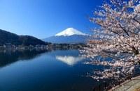 """Giappone: ciclo di webinars """"About Japan"""" sui temi emergenti del mercato locale"""