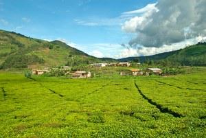 Rwanda - Forum L'Italia incontra il Rwanda - Milano, 28 giugno