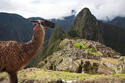 Perù: nuova guida alle imprese e agli investimenti 2021