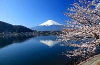 Webinar dedicati al Doing business in Japan